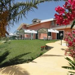Casa Vacanze Alficodindia